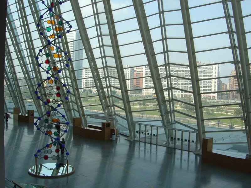 Vista interior museo principe felipe