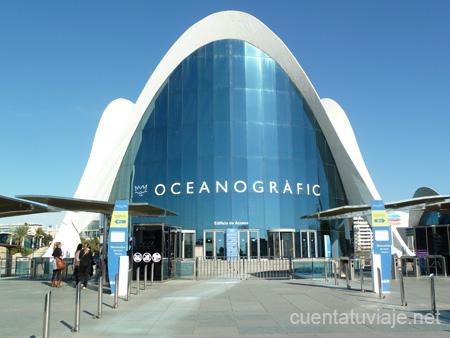 Reportaje l oceanogr fic valencia for Oceanografic valencia